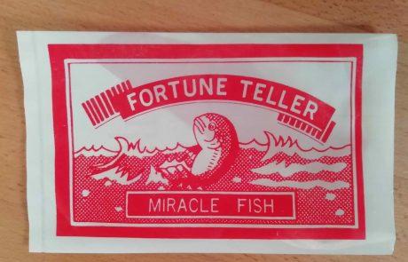 Miracle fish envelope