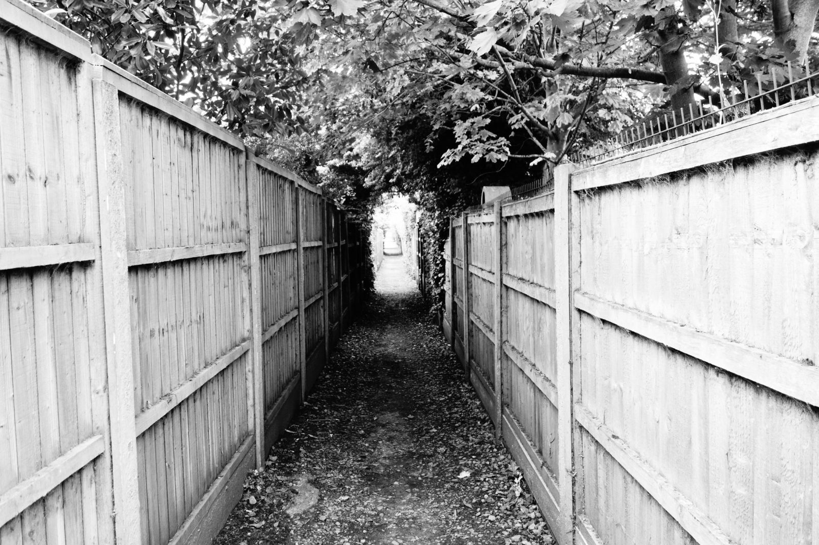 Fenced alleyway