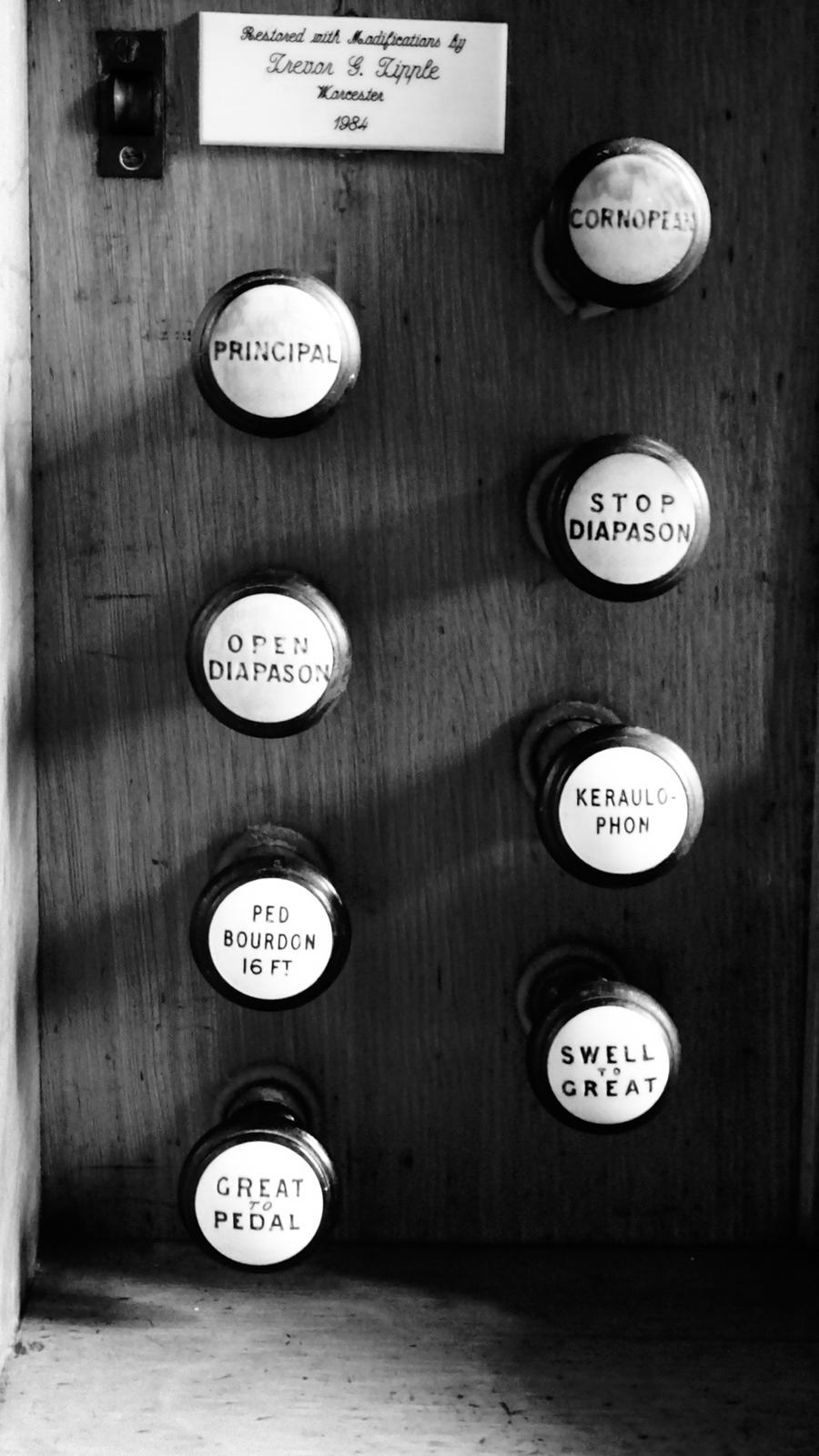 Organ stoppers