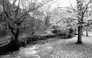 Park Stream in Sheffield, England