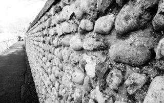 Flint Wall in Dorset, England