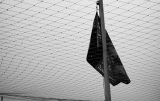 A flag separated by a seagull net for its own good