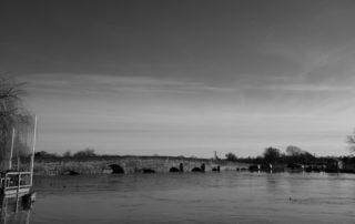 A sunny wet bridge in Warwickshire, England