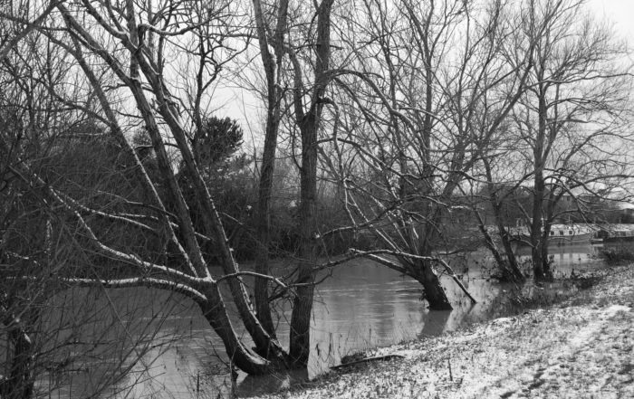 Frozen River Branches by the river Avon in Warwickshire, England
