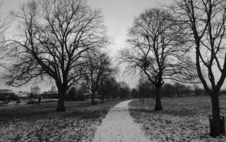 Frozen Park Path in Warwickshire, England